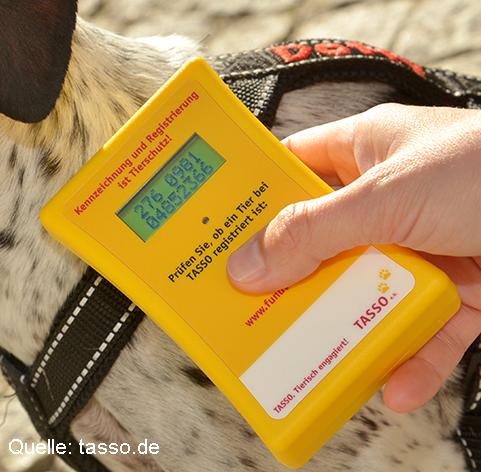 Transponder-wird-beim-Hund-mit-Lesegerat-ausgelesen_1.jpg